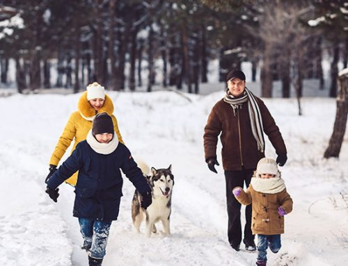 Family Time: Things to do in November